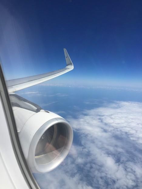 写真: 飛行中