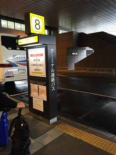 写真: 成田空港第2ターミナルシャトルバス乗り場