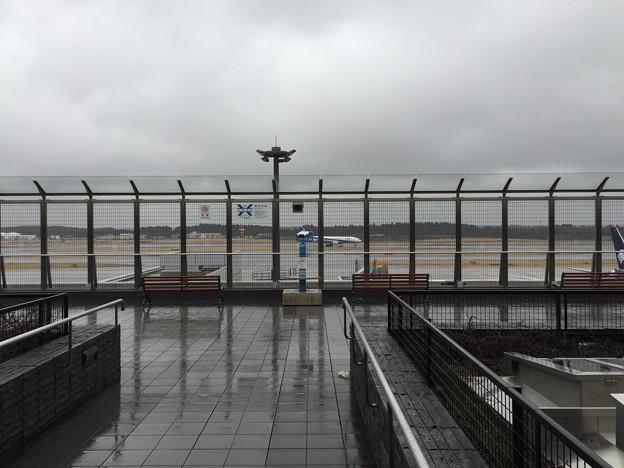 写真: 成田空港第1ターミナル展望デッキ