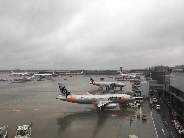 写真: 成田空港第3ターミナル連絡ブリッジより
