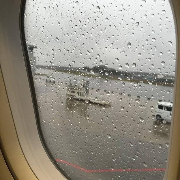 写真: 帰りの機内より