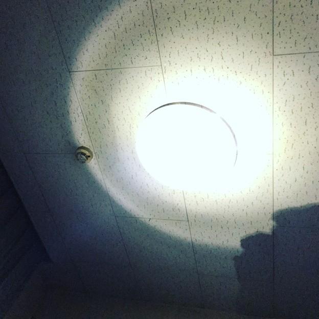 写真: LEDランプで天井を照らして間接照明