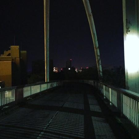 ほぼ真っ暗なサイクリングロード