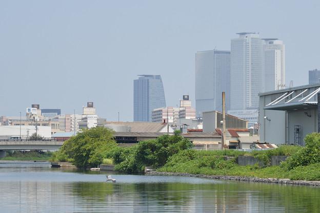 20190818クルーズ名古屋からの街並み(60)