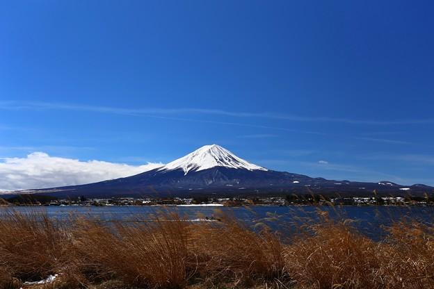 Photos: 河口湖からの富士山