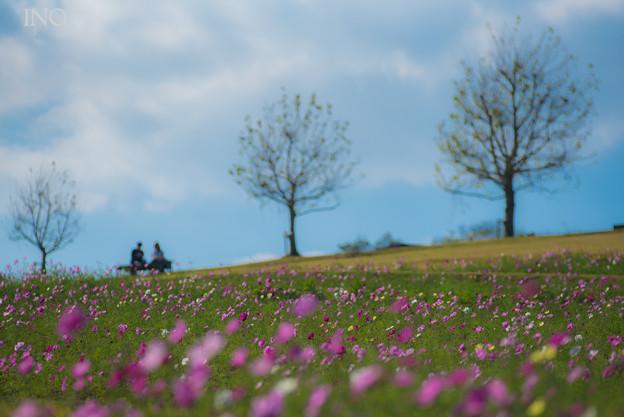 二人の花桟敷