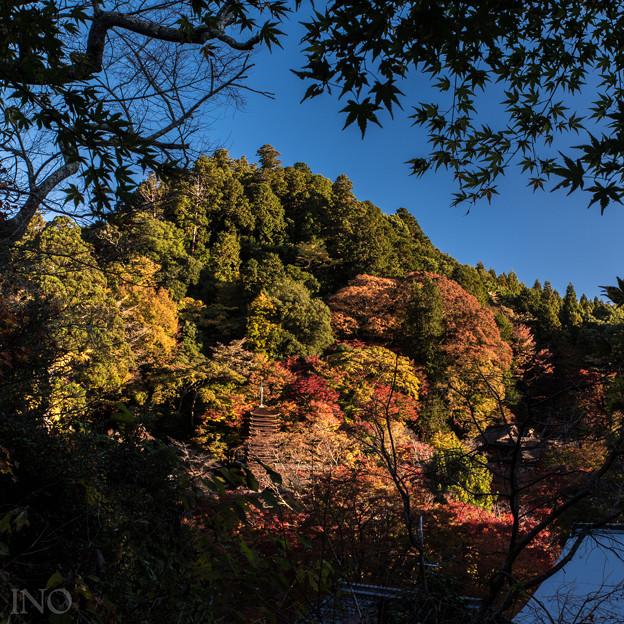 Photos: 談いの山