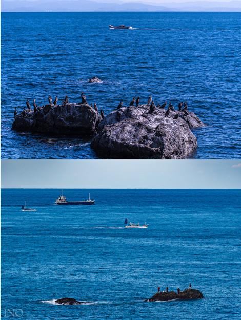 Fisherman's Reef
