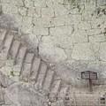 写真: 60ハート型の石