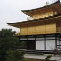 Photos: 金閣寺。