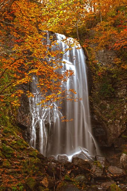 写真: 小野川不動滝の秋