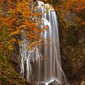 小野川不動滝の紅葉