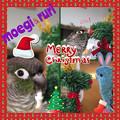 素敵なクリスマス♪