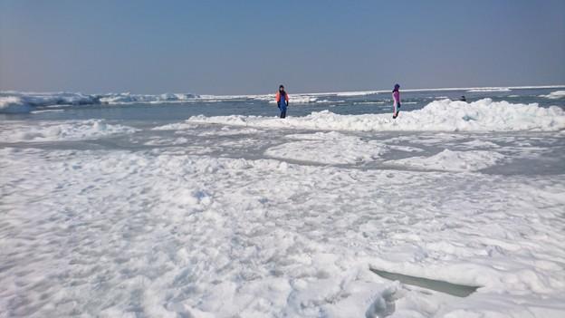 流氷 沖まで歩いた♪