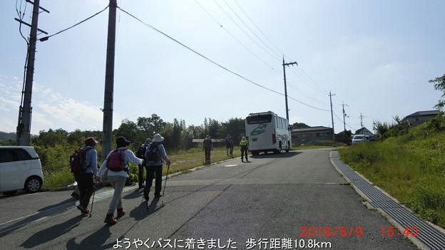 Photos: CIMG3615