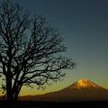 Photos: 富士山夕日