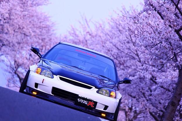 Photos: 愛車を愛写
