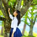 Photos: 五月の風