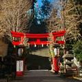 愛宕神社 #5