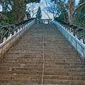 愛宕神社 #4