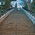 Photos: 愛宕神社 #4