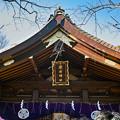 写真: 愛宕神社 #1