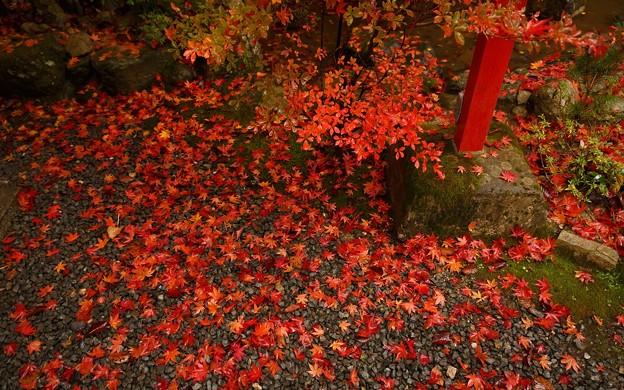 鍬山神社126