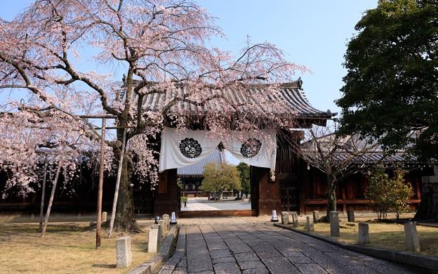 妙覚寺02