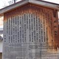写真: 椿寺(地蔵院)20