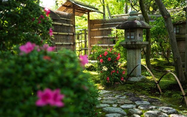松花堂庭園44