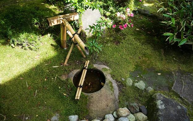 松花堂庭園42