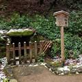 Photos: 神護寺49