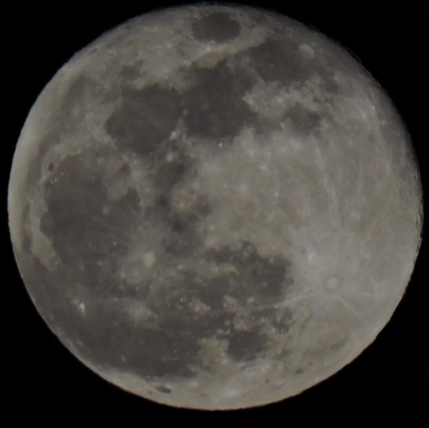 Photos: 満月-3