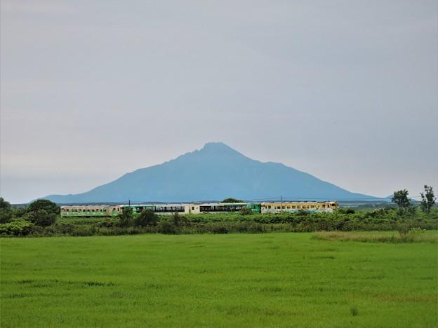 風っこ宗谷号と利尻富士
