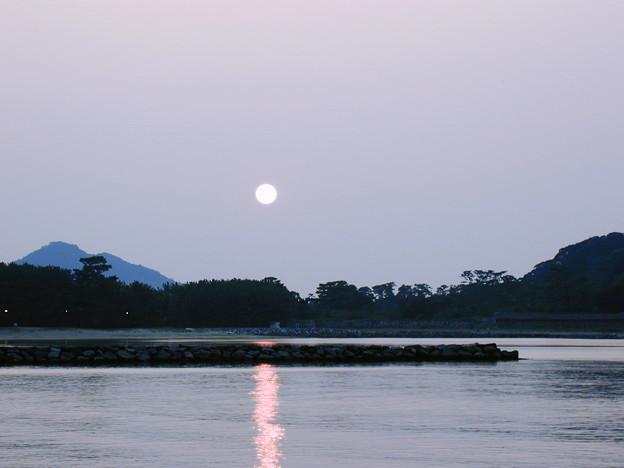 菊ヶ浜 #4