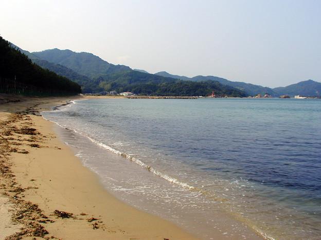 菊ヶ浜 #9