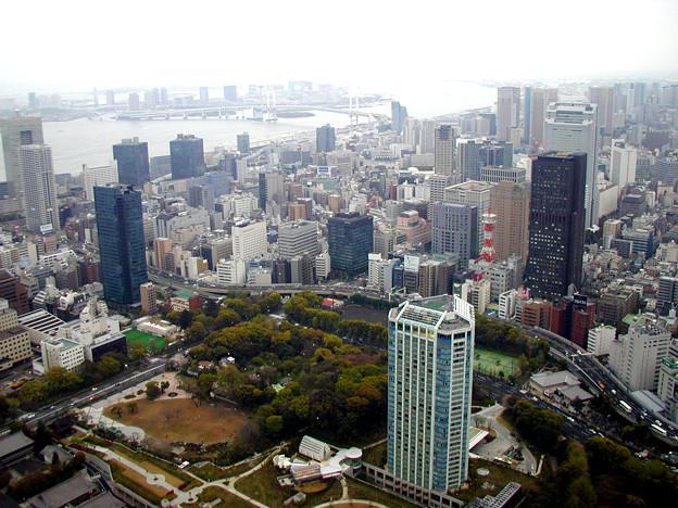 東京タワー #7