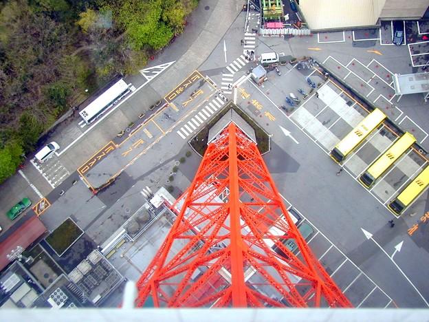 東京タワー #8