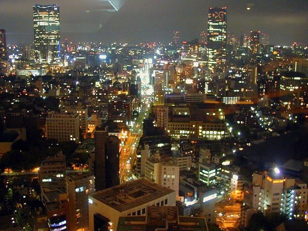 東京タワー #13