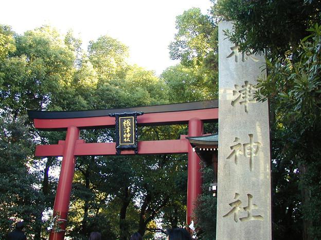 根津神社 #1