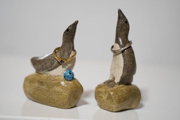 オロロン鳥 リングホルダー