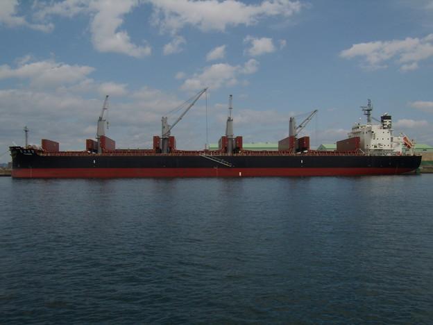 2017年に新造されたBulk carrier - FUJISUKA