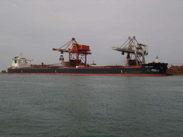 Bulk carrier - RED SAGE