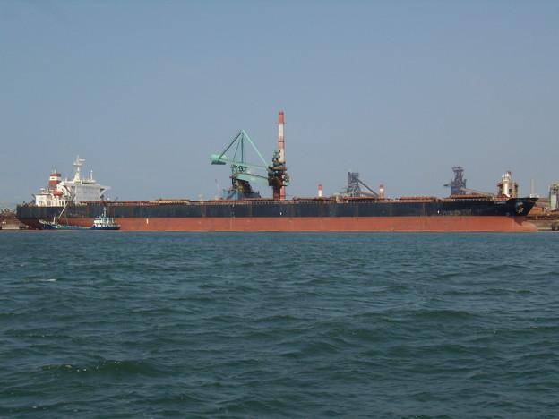 Bulk carrier - TANGO