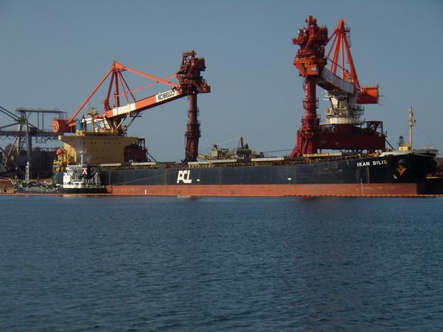 Bulk carrier - IKAN BILIS (2)