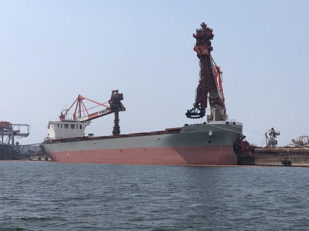 Bulk carrier - LEGATO II