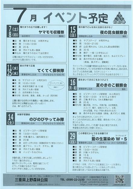 三重県上野森林公園7月イベント