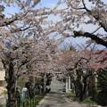 写真: 住三吉神社