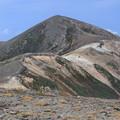 Photos: 間宮岳から見る北鎮岳