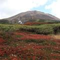 Photos: 旭岳と紅葉
